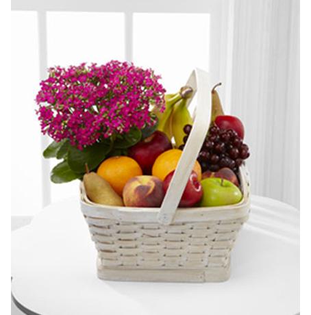 Fruit Arrangements Fruit Gift Basket Delivery From