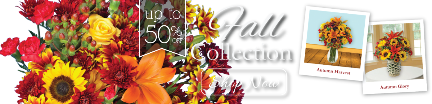 Fall Collection Flowers